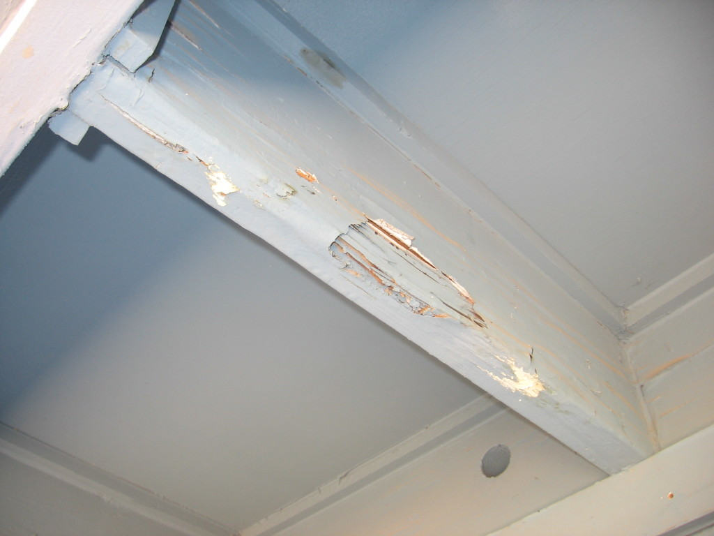 termite-inspection-damage-4-1024x768